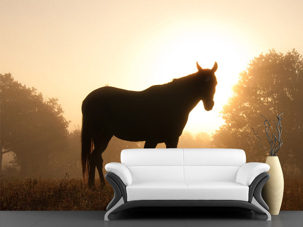Silhouette of an Arabian Horse Wall Mural