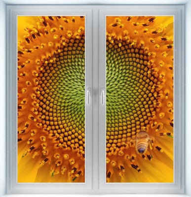 Sunflower Instant Window
