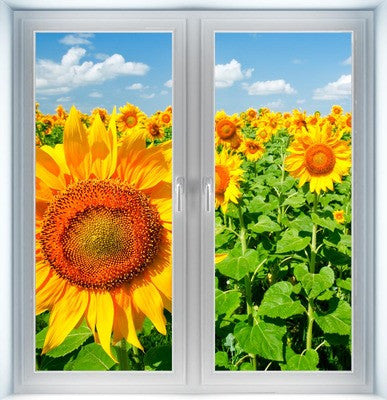 Sunflowers Under Blue Sky Instant Window