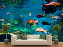 Load image into Gallery viewer, Tropical Fish Wall Mural