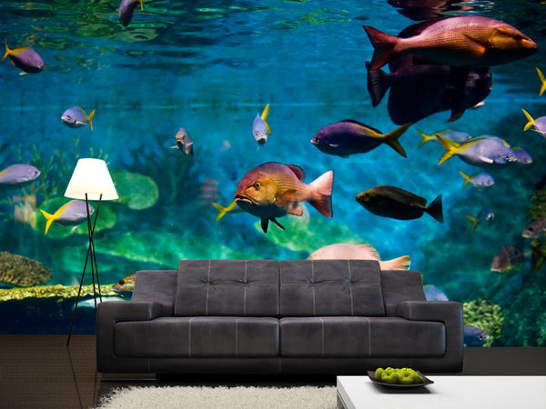 Tropical Fish Wall Mural