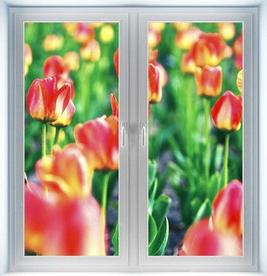 Tulip Instant Window