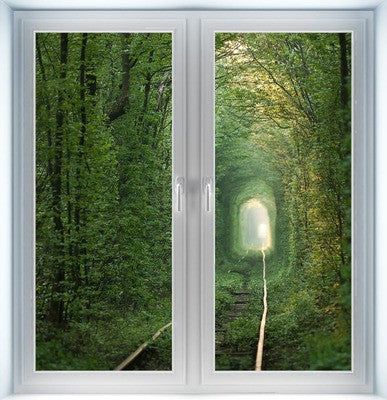 Tunnel of Love Instant Window
