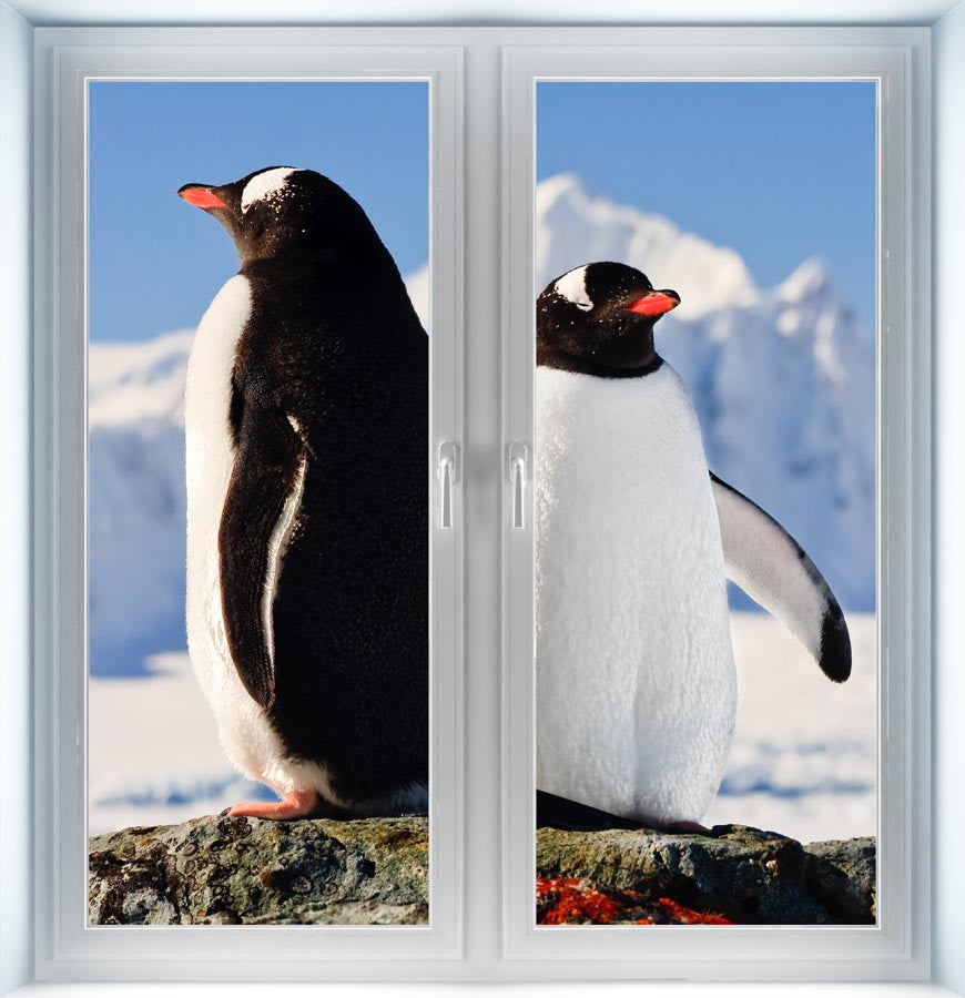 Two Penguins Instant Window