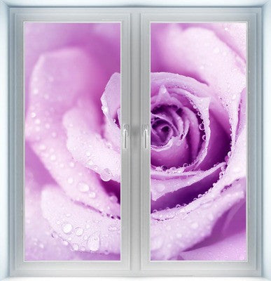 Wet Purple Rose Instant Window