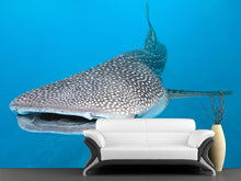 Load image into Gallery viewer, Whale Shark Wall Mural