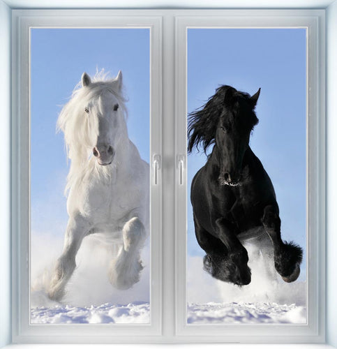 White and Black Horses Instant Windows