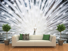Load image into Gallery viewer, White Peacock  Wall Mural