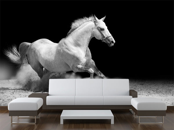 White Stallion  Wall Mural