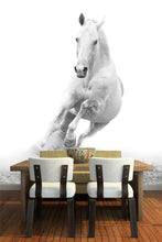 Load image into Gallery viewer, White Horse Galloping Wall Mural