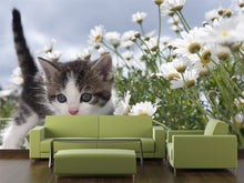 Load image into Gallery viewer, Young Cat Between Flowers Wall Mural