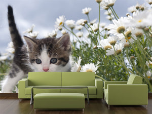 Young Cat Between Flowers Wall Mural