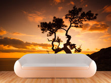 Load image into Gallery viewer, Zen Tree on Cliffs at Sunset Wall Mural