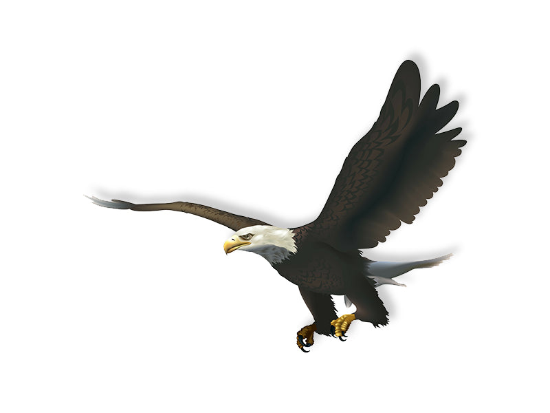 Soon Eagle Wall Decal