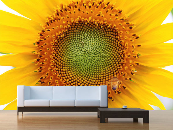 Beautiful Sunflower Wall Mural