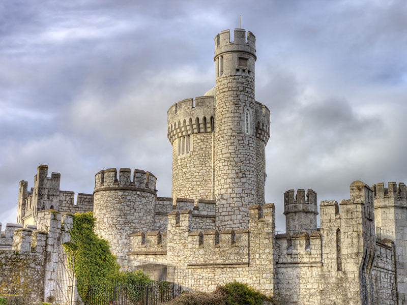 Blackrock Castle in Cork City Ireland Wall Mural