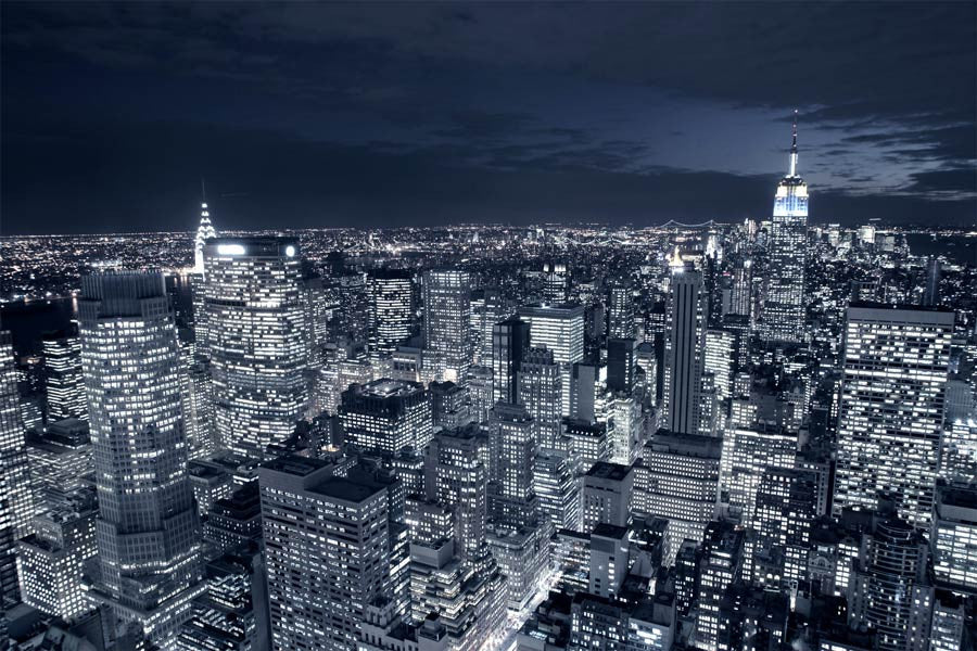blue new york city skyline wall mural majestic wall art