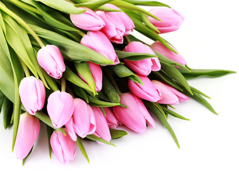 Bouquet of Pink Tulips Wall Mural