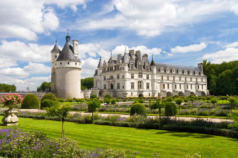 Chenonceaux Castle Fance Wall Mural