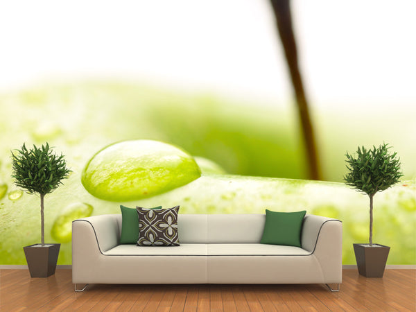 Close up Green Apple Wall Mural
