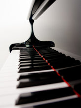 Load image into Gallery viewer, Close-up of Grand Piano Wall Mural