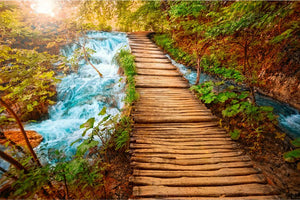 Boardwalk Over Waterfall Wall Mural