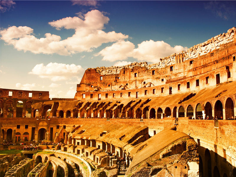 Colosseum Italy Wall Mural