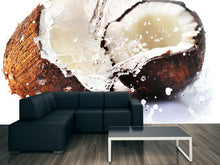 Load image into Gallery viewer, Cracked Coconuts Wall Mural