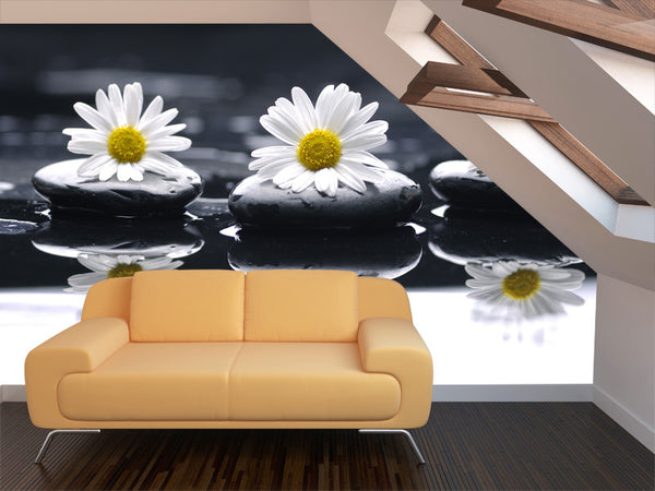 Daisies and Pebbles Wall Mural