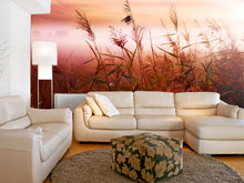 Load image into Gallery viewer, Early Morning Mist Wall Mural