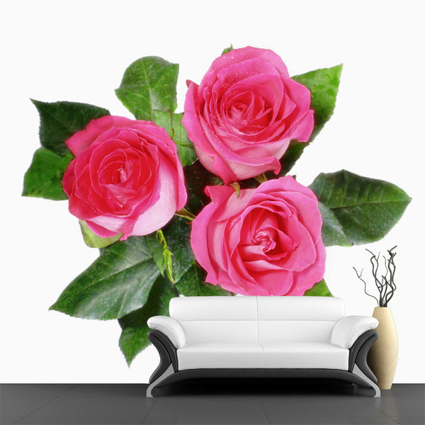 Group of Pink Roses Wall Mural