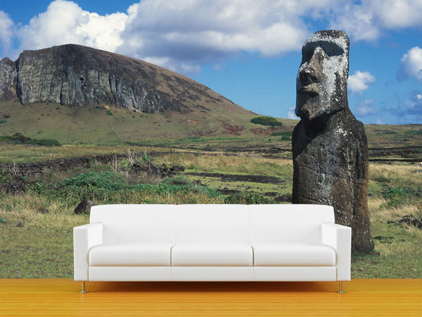 Head on Easter Island Wall Mural
