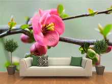 Load image into Gallery viewer, Japanese Cherry Blossoms Wall Mural