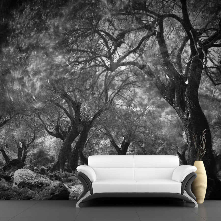 Forest Wall Art mysterious dark forest wall mural – majestic wall art