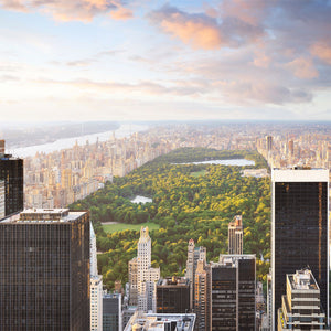 New York Cityscape with Central Park Wall Mural
