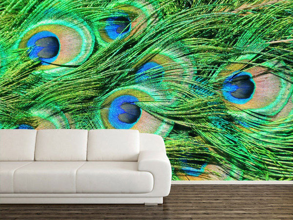 Peacock Texture Wall Mural