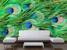 Load image into Gallery viewer, Peacock Texture Wall Mural