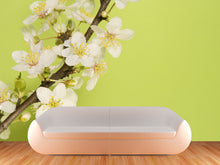 Load image into Gallery viewer, Plum Blossoms Wall Mural