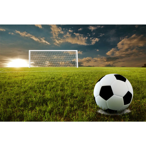 Soccer Penalty Kick Wall Mural