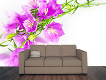 Load image into Gallery viewer, Springtime Flowers Wall Mural