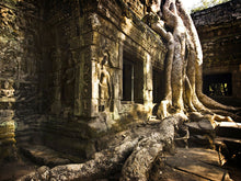 Load image into Gallery viewer, Ta-Prohm Temple Wall Mural