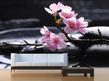 Load image into Gallery viewer, Therapy Stones with Cherry Flowers Wall Mural