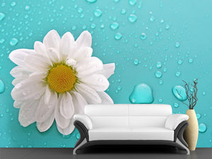 White Chamomile Wall Mural