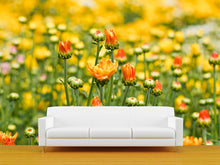 Load image into Gallery viewer, Yellow Chrysanthemum Flowers Wall Mural