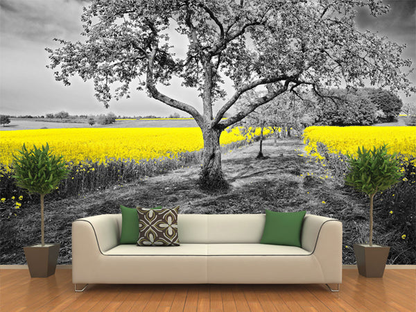 Yellow Oil Seed Rape Field Wall Mural