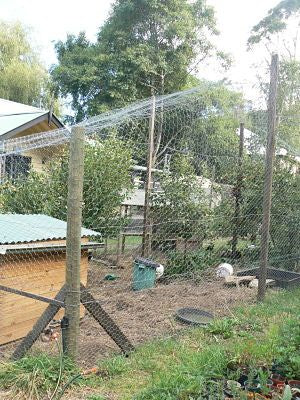 New Orchard enclosure