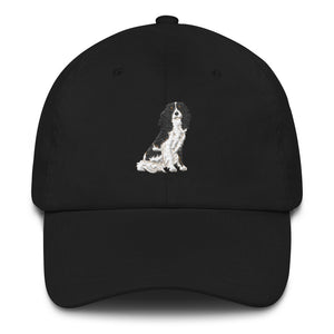 team tri | dad hat