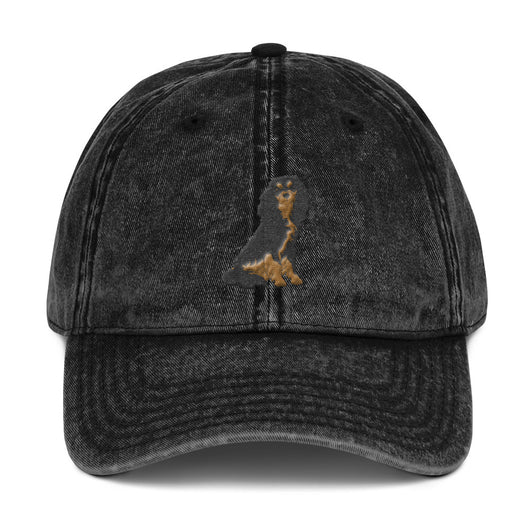 team black & tan | vintage dad hat