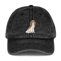 team blenheim | vintage dad hat