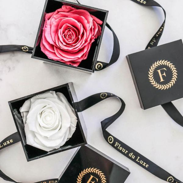 ACRYLIC BOX : Premium Single Rose Perfect Gift